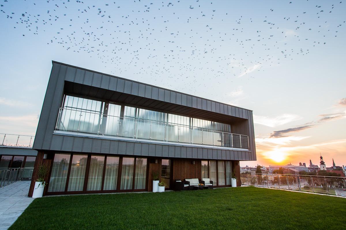 apartament z tarasem, angel wings, projekt wnętrz, architekt wrocław, koru, nowoczene wnętrze, julia koczur 01